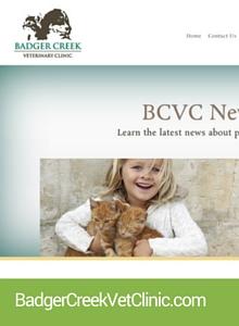 WebIcon-BCVC